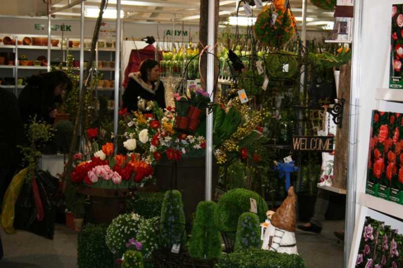 Flora2013-4.jpg